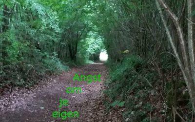 Angst om je eigen pad te gaan